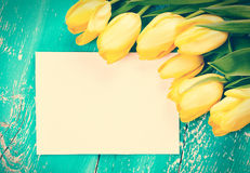 Tulips and blank card Stock Images