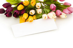 Tulips and blank message Stock Photos