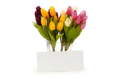 Tulips and blank message Stock Photo