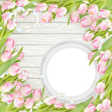 Tulips and blank white frame. EPS 10 Royalty Free Stock Images