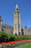 Tulips in bloom under Peace Tower Royalty Free Stock Image