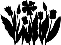 Tulips. Blooming tulips in the flower bed Vector Illustration