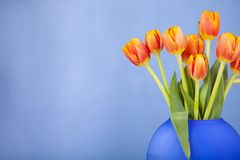 Beautiful spring bouquet. Stock Photography