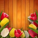 Tulips on boards stock illustration