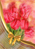 Tulips on Bokeh Background Royalty Free Stock Image