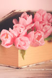 Tulips in book Royalty Free Stock Image