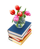 Tulips and books Royalty Free Stock Photos