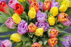 Tulips bouquet from top. Bunch of colourful tulips. Spring and easter flowers Royalty Free Stock Photos