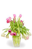 Tulips bouquet in vase Royalty Free Stock Photos