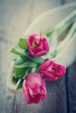 Tulips in bowl on wooden board Stock Image