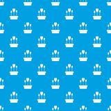 Tulips in box pattern seamless blue Stock Photography