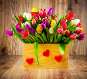 Tulips in the box Royalty Free Stock Images