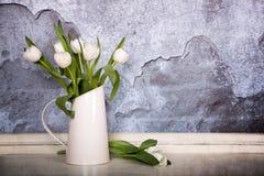 Tulips brancos Imagens de Stock Royalty Free