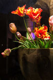 Tulips in Brown Pot. Colorful Tulips in Brown Pot Stock Photos