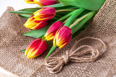 Tulips on a burlap. Royalty Free Stock Photo