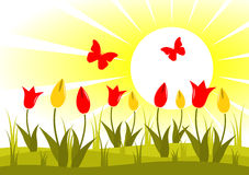 Tulips and butterflies Stock Images