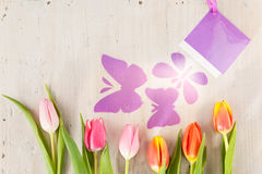 Tulips and butterflies Royalty Free Stock Photo