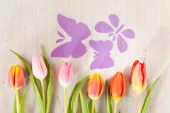 Tulips and butterflies Stock Photography