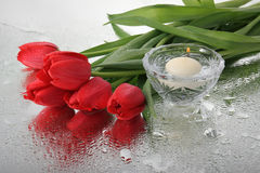 Tulips and a candle. Royalty Free Stock Photos