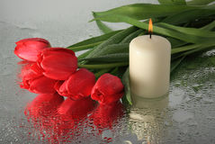 Tulips and a candle. Royalty Free Stock Photography