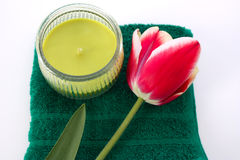 Tulips and candle Stock Images