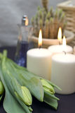 Tulips and candles. Three green tulips and three white candles presented as bathroom decoration Stock Photography