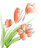 Tulips card Royalty Free Stock Photography