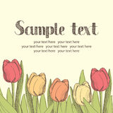 Tulips card Royalty Free Stock Photos