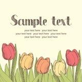 Tulips card Royalty Free Stock Photos