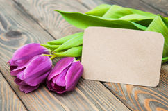 Tulips with a card Stock Photography