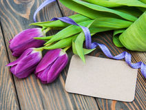 Tulips with a card Stock Images