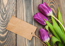 Tulips with a card Royalty Free Stock Photo