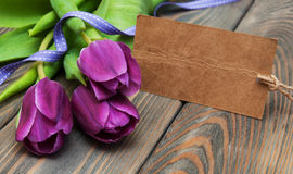 Tulips with a card Royalty Free Stock Photos