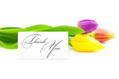 Tulips and a card signed thank you Stock Image
