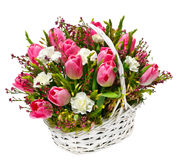 Tulips and carnations in a basket Royalty Free Stock Photos