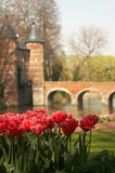 Tulips at the castle Royalty Free Stock Images