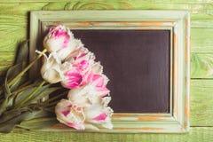 Tulips on chalkboard Stock Photo