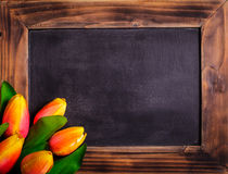 Tulips with chalkboard Stock Photo