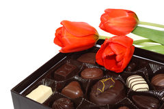 Tulips and Chocolate Royalty Free Stock Images