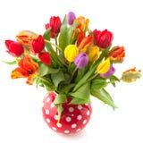 Tulips coloridos do ramalhete imagens de stock