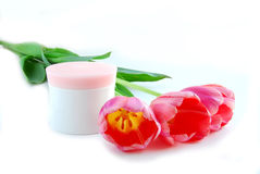 Tulips and cream stock photos