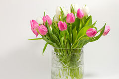 Tulips in crystal vase Royalty Free Stock Image
