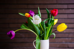 Tulips in a cup Stock Photo