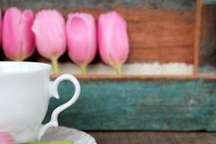 Tulips and cup and saucer with painted wooden background, mother's day. Tulips and cup and saucer with wooden background, partly painted in the color Stock Photos