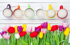 Tulips and cups Stock Photography