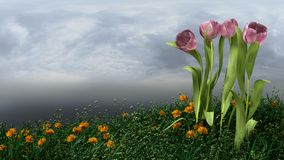 Tulips. 3d rendering of tulips in a grassy field Royalty Free Stock Images