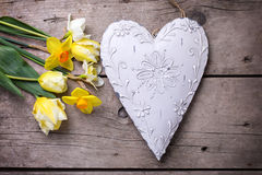Tulips and daffodils flowers  and decorative heart on vintage wo Royalty Free Stock Image
