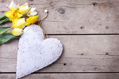 Tulips and daffodils flowers  and decorative heart on vintage wo Royalty Free Stock Images
