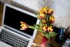 Tulips on desktop Royalty Free Stock Photo