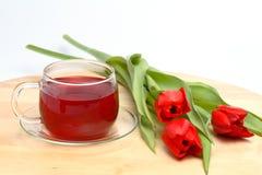 Tulips do chá e do vermelho Imagens de Stock Royalty Free